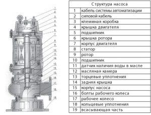 структура насоса